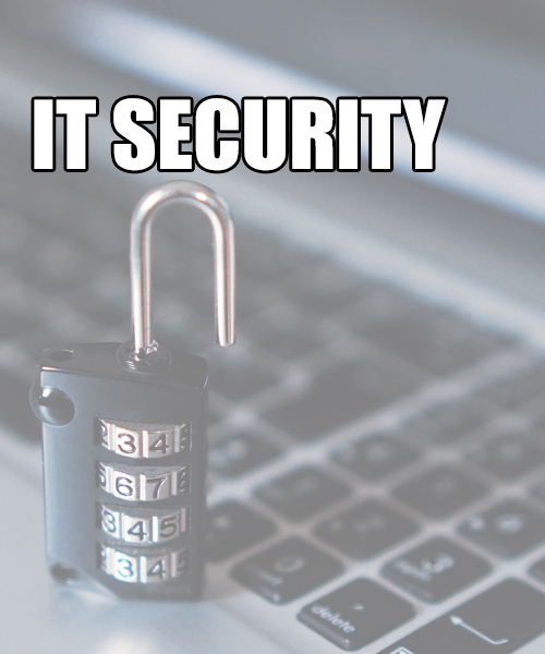 IT Security Icdl