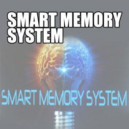 smart memory system